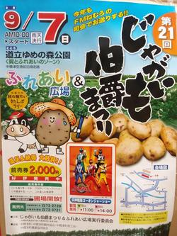 Potato_festival