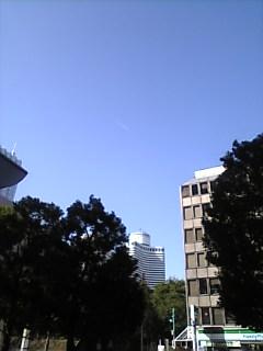 東京の朝!